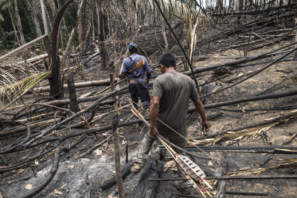 Indigenous patrol discovers recently burnt areas and a shack set up by invaders - likely grileiros, workers driving illegal land seizures, deforestation and burning - in Uru Eu Wau Wau Indigenous territory, Rondônia state, Brazil in September 2019. © Alessandro Falco